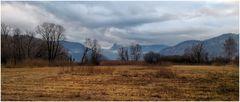 Naturschutzgebiet Steinibachried in Horw