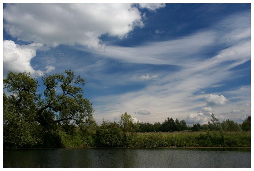 Naturschutzgebiet - Tibaum