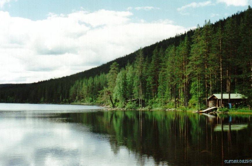 Navardalen / Älvdalen-Sweden