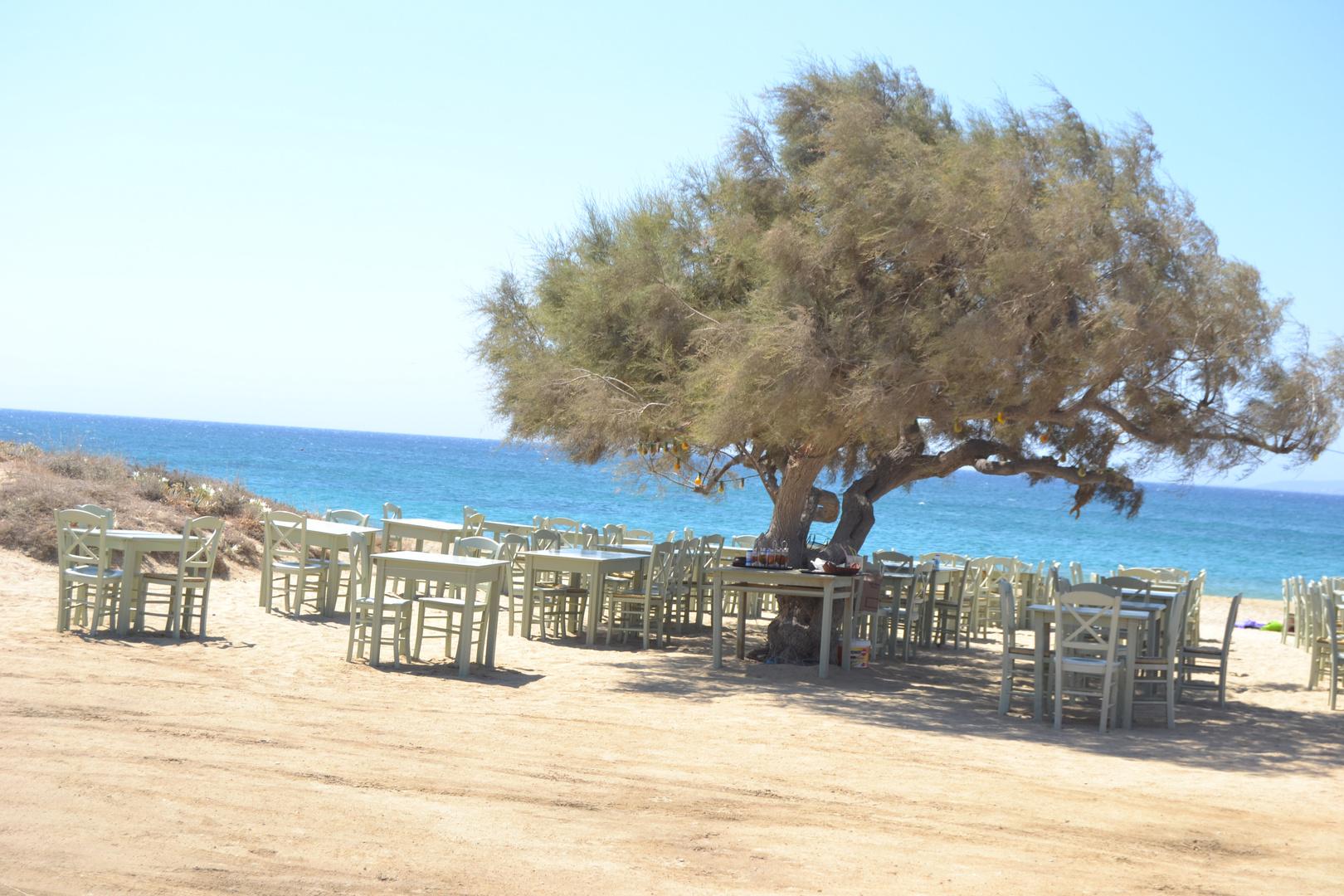 Naxos, Taverna Paradio