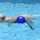 Nayural Swimmer