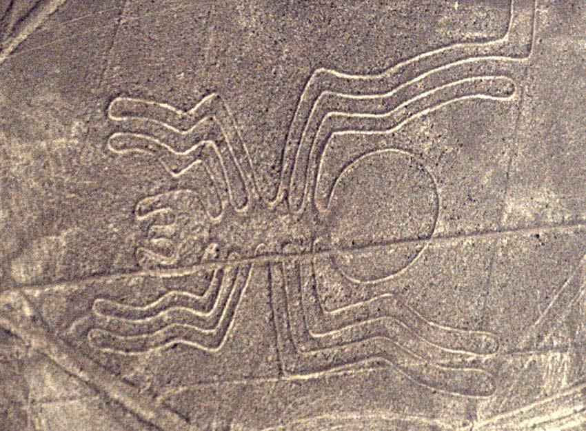Nazca-Linien (1): die Spinne