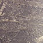 Nazca-Linien (2): Der Baum