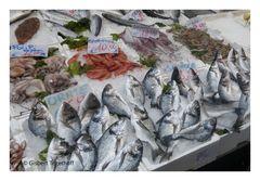 Neapel Fischverkauf auf der Straße