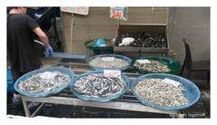 Neapel - Fischverkauf auf der Straße