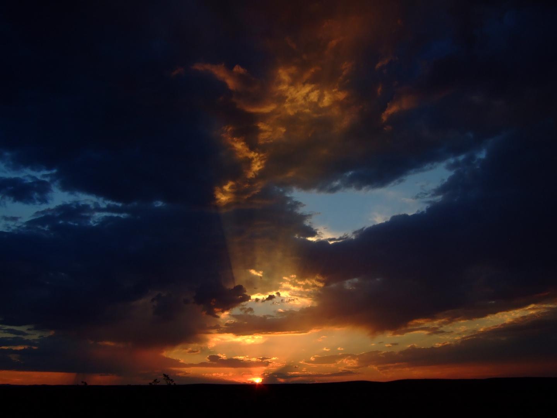 Near  Hope, New Mexico