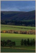 near netherton Northumberland 5