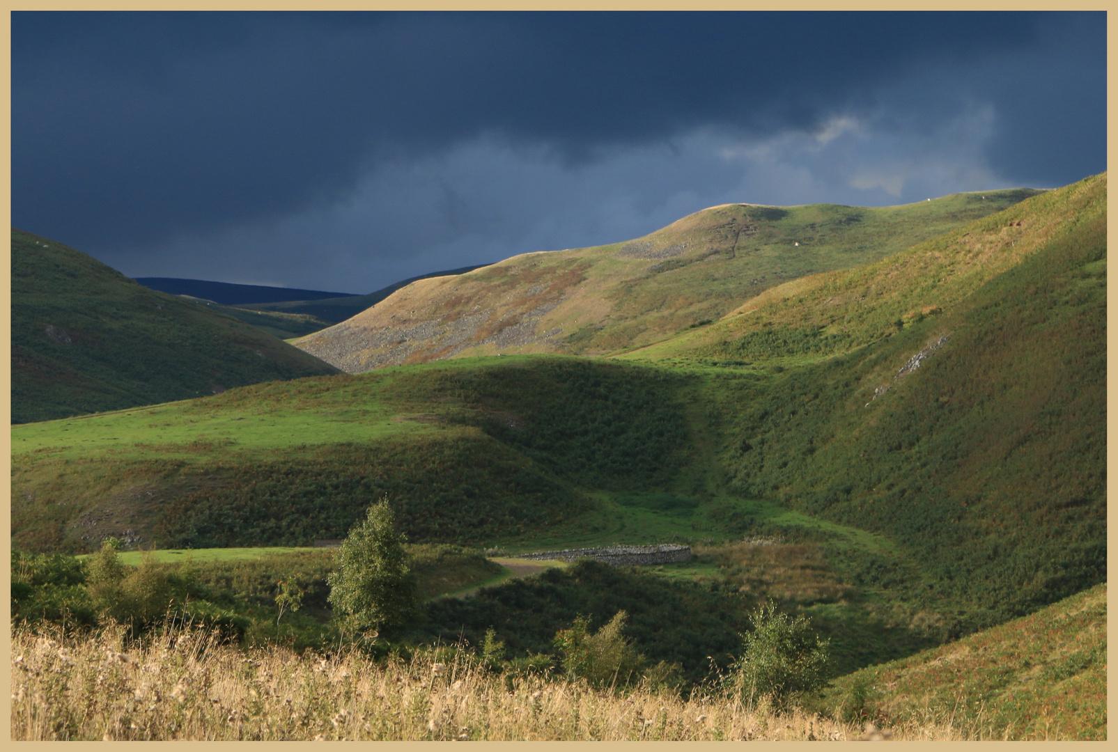 near shillmoor 12