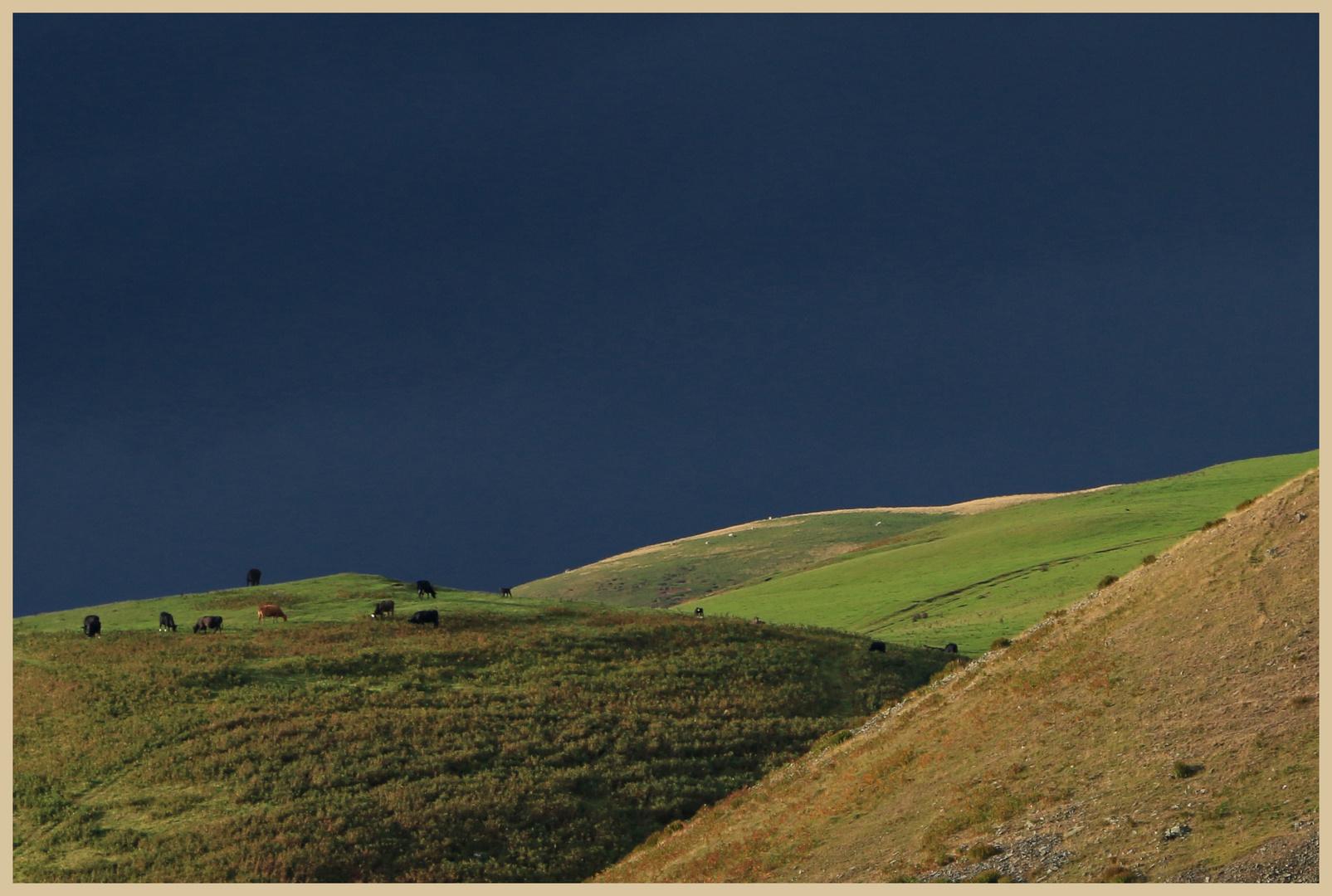 near shillmoor 2