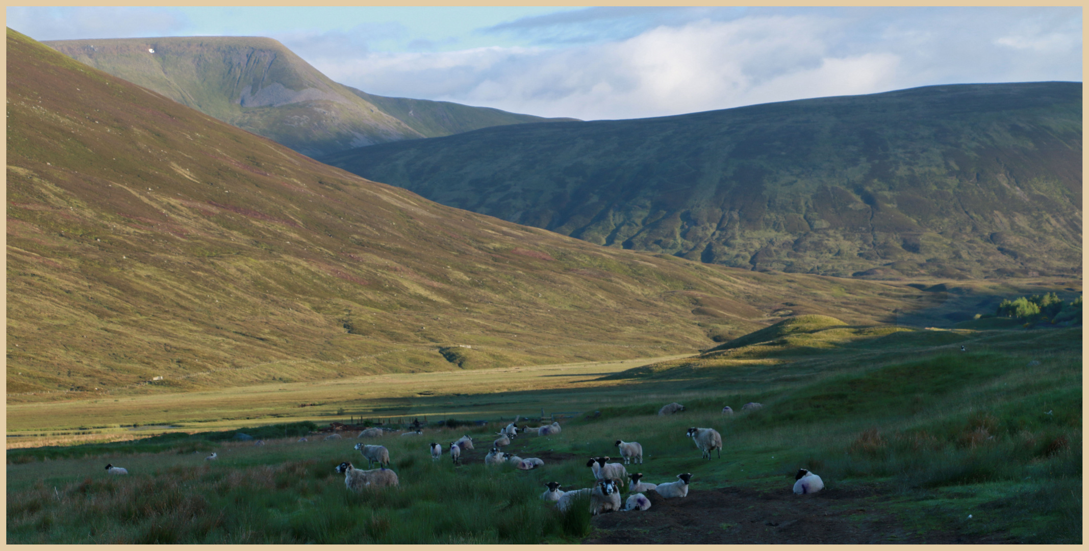 near the pass of drumochter 4