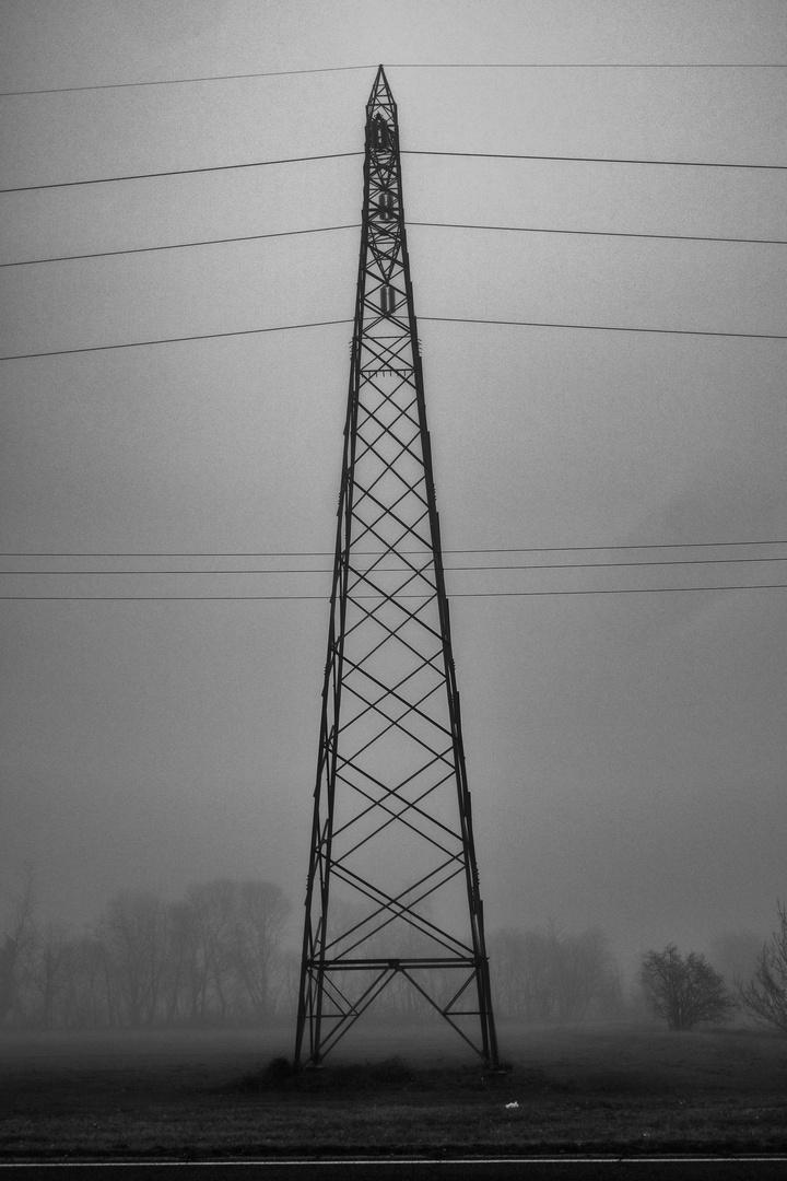 Nebbia a Pioltello