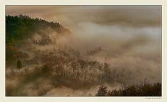 Nebbia e luce (4)