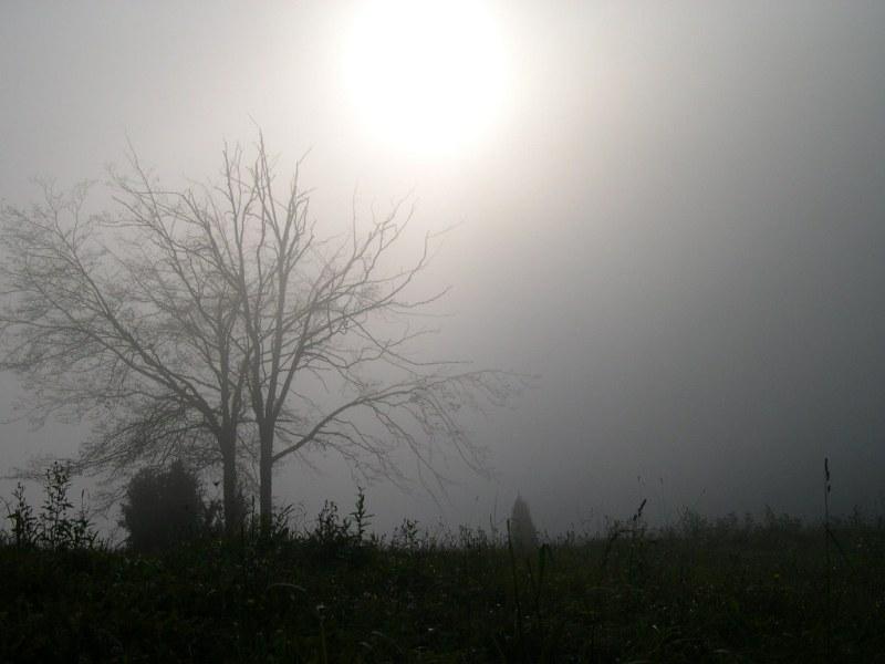 nebbia in collina