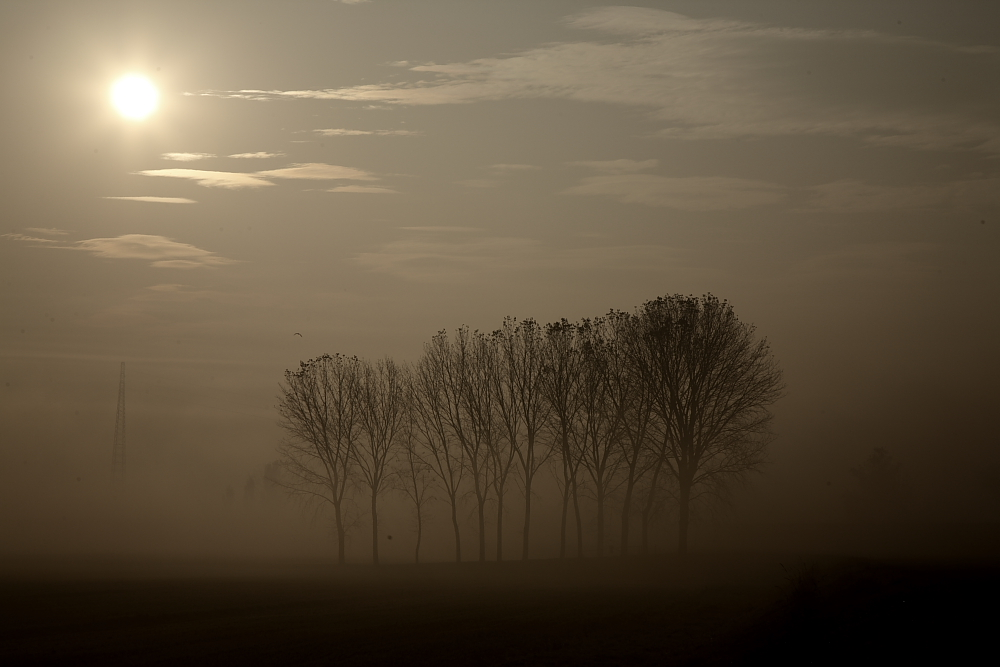 Nebbia in Padania