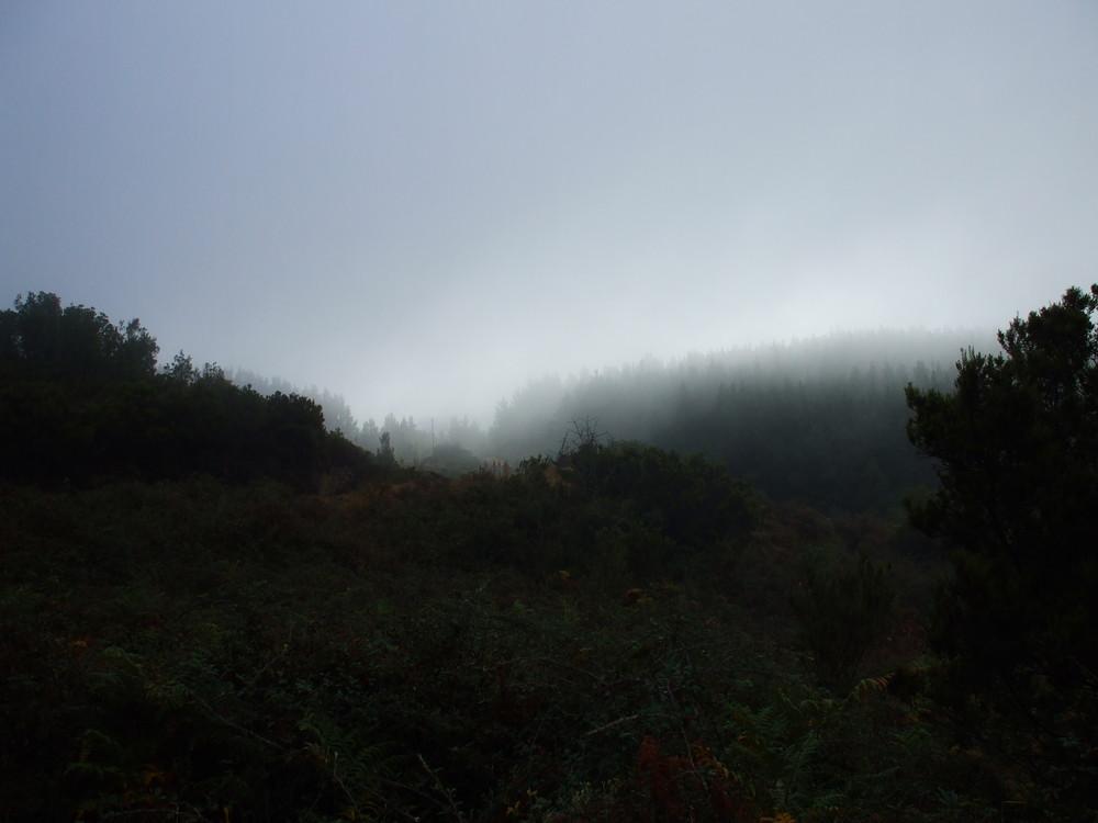 nebbia mattutina a Sebera