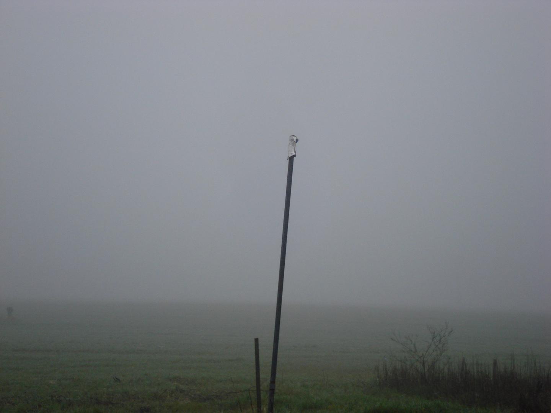 Nebbia oltre
