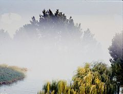 nebbia sul fiume