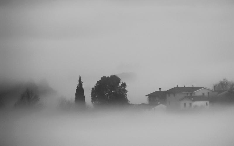 Nebbia sulla campagna