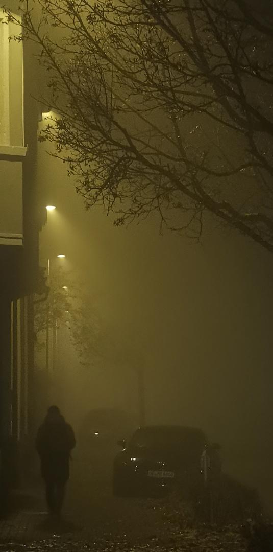 Nebel (1)Nach der Arbeit, auf dem Nachhauseweg / Brume (1) Après le travail, sur le chemin du retour