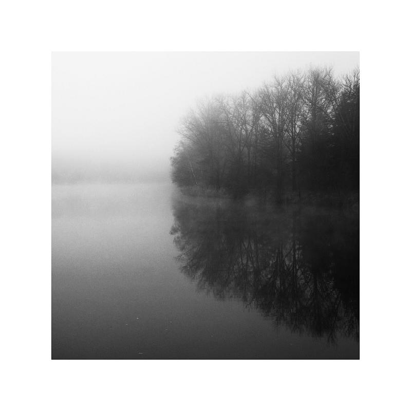 [ Nebel ]