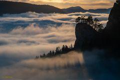 Nebel am Ankenballen