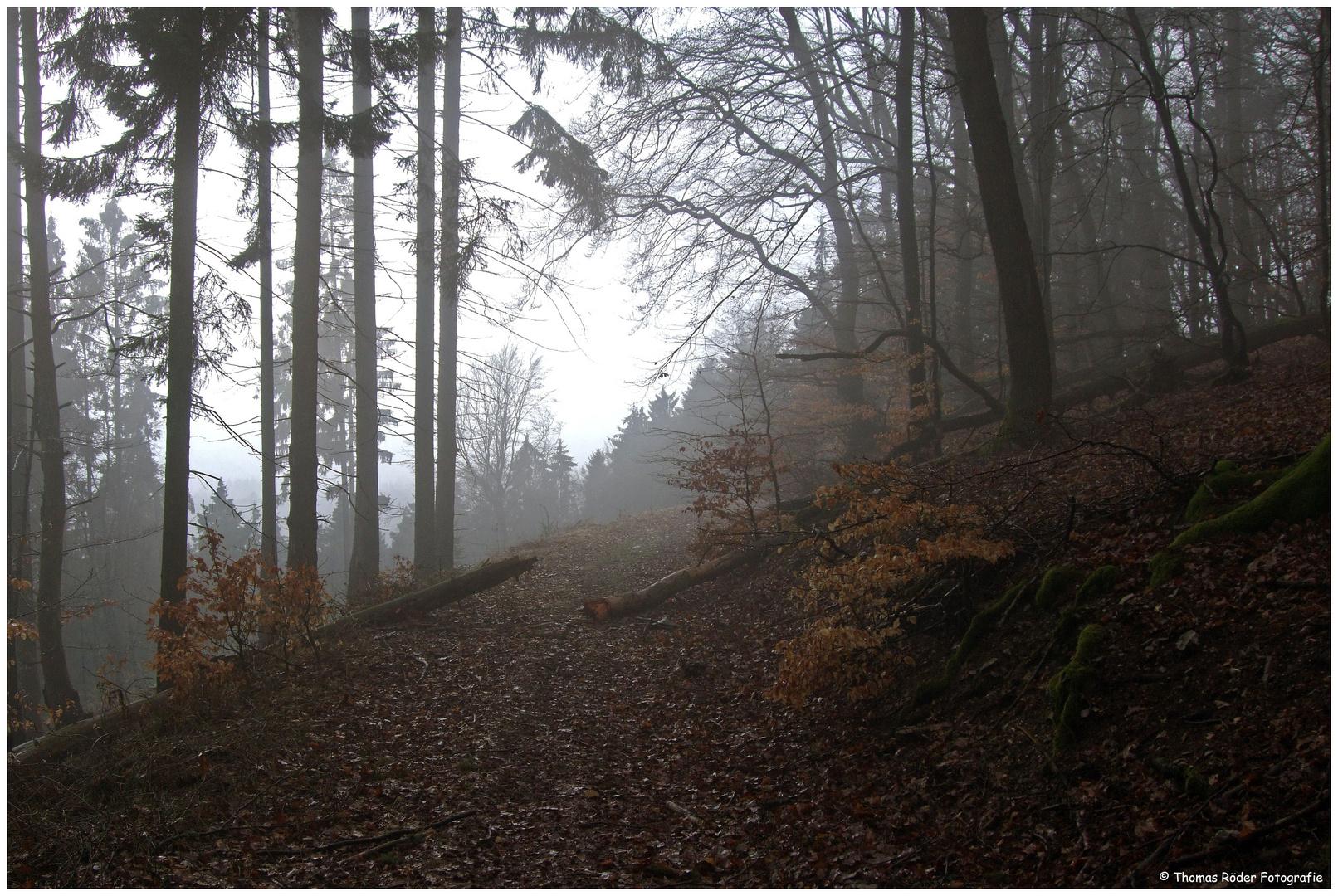 Nebel am Herzberg im Taunus