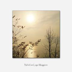 Nebel am Lago Maggiore