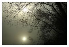 Nebel am Main