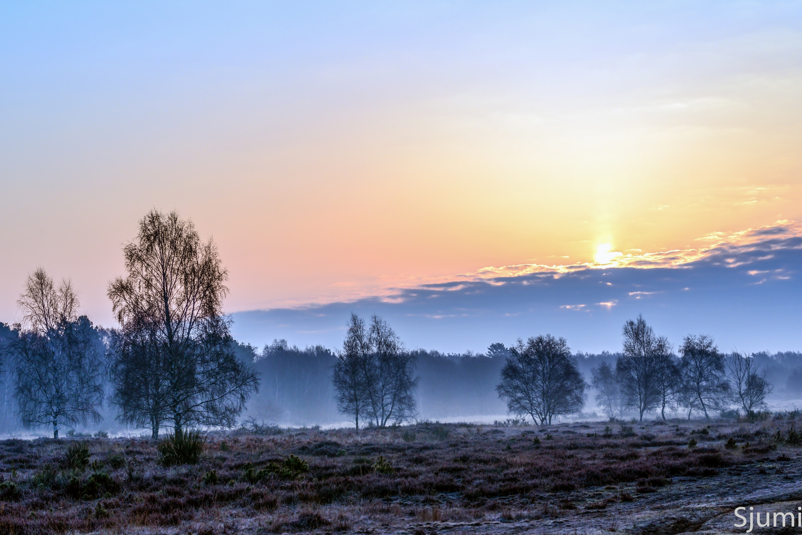 Bilder Nebel