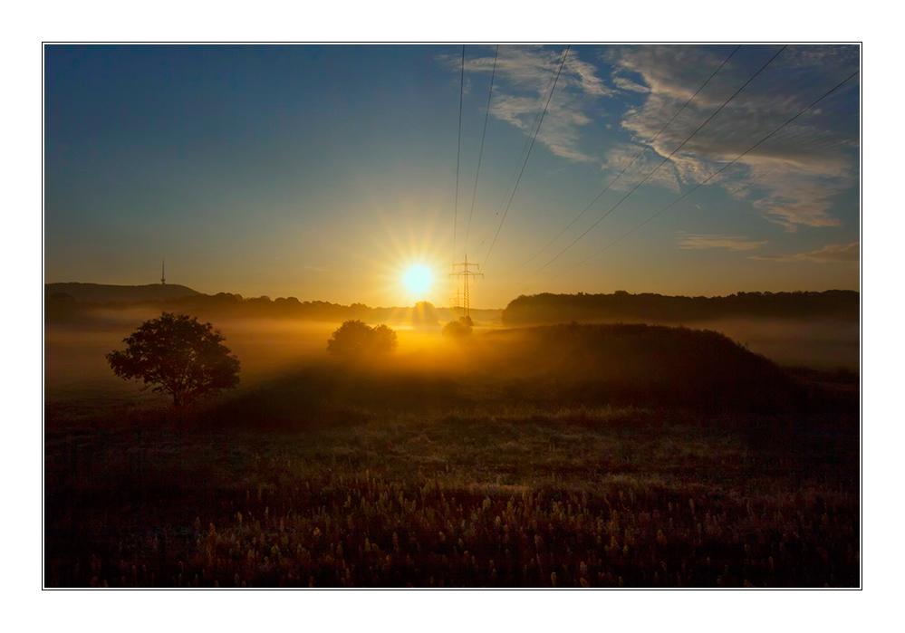 ~Nebel am Morgen~