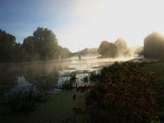 Nebel an der Sarthe