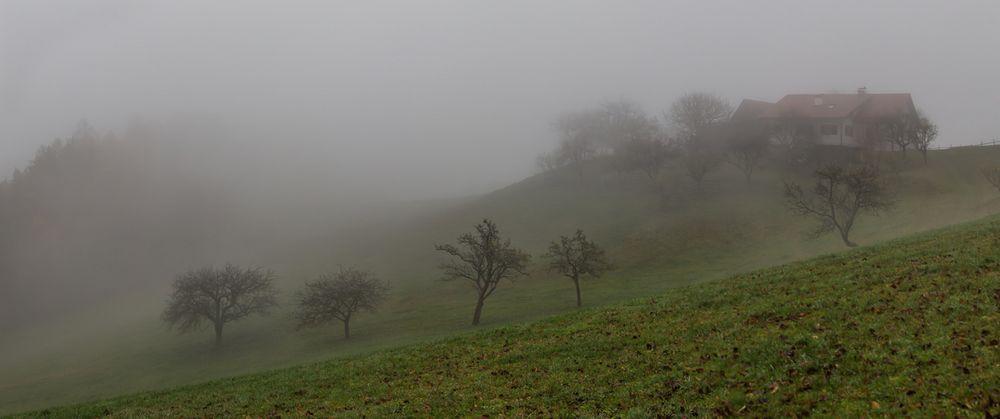 Nebel auf der Kehr!