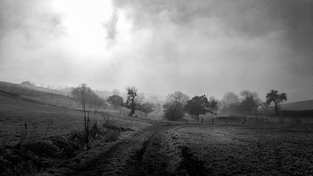 Nebel bei Jena