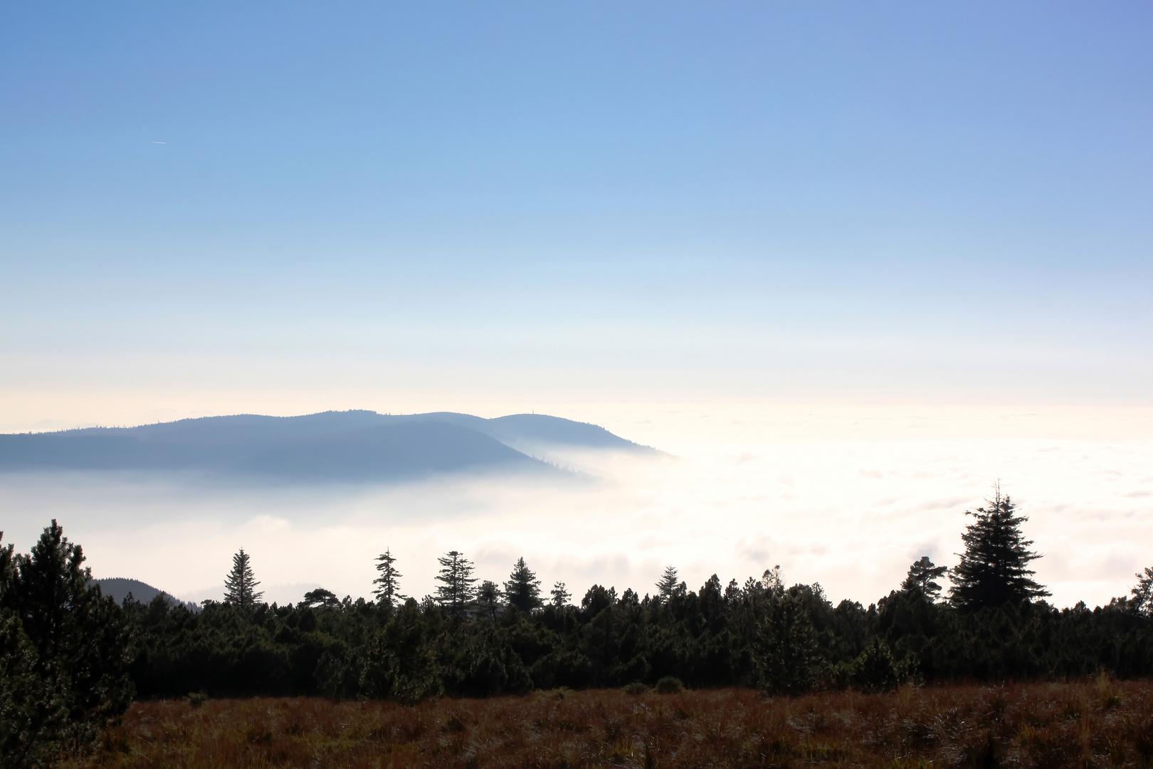 Nebel der inspiriert