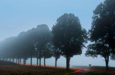 Nebel hat viele Gesichter: Rechts vor links