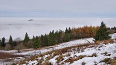 Nebel, Herbst, und Winter....