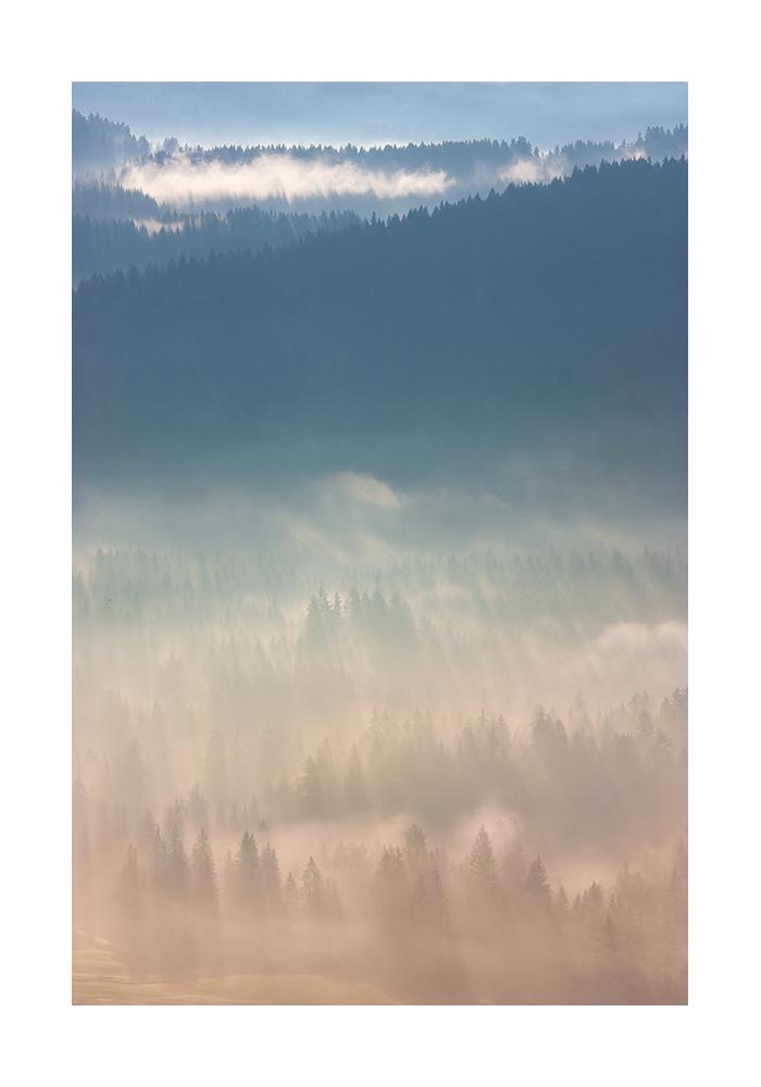 Nebel I