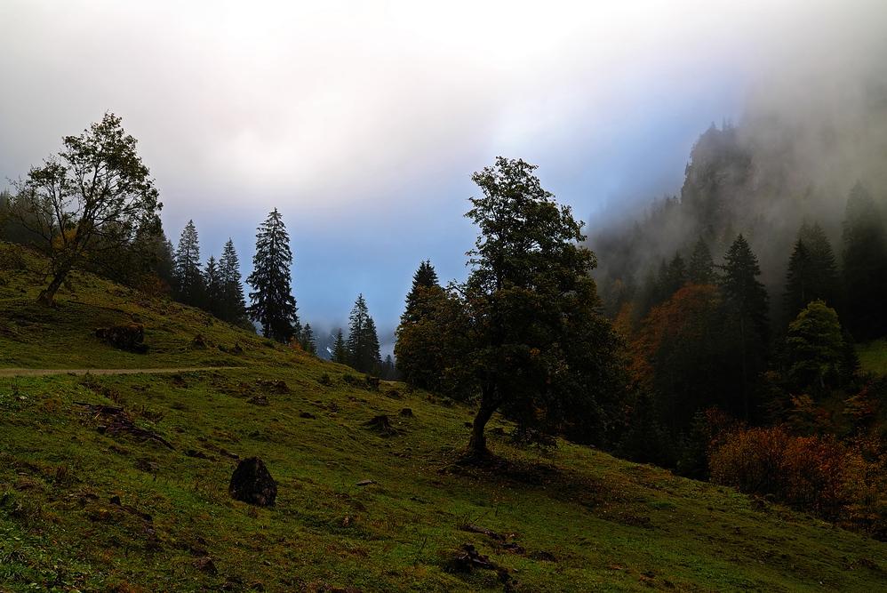 Nebel im Dietersbachtal