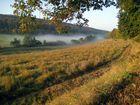 Nebel im Elm