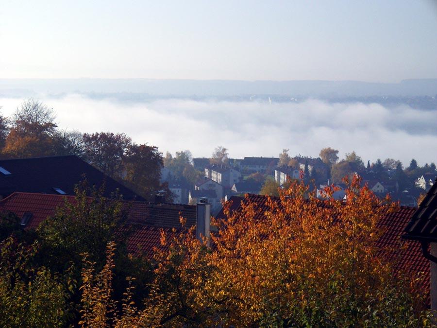 Nebel im Esslinger Tal