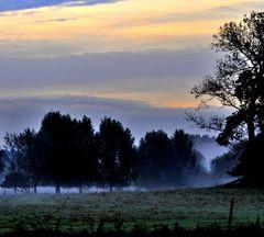 Nebel im Morgenlicht
