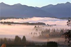 Nebel im Oberland