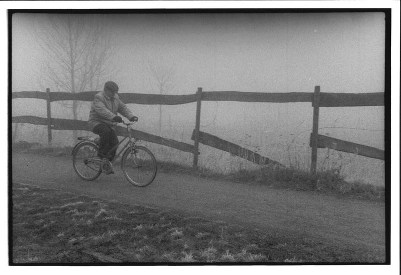 Nebel im Pott