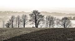 Nebel im Tal (2)