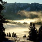 Nebel im Tal ...