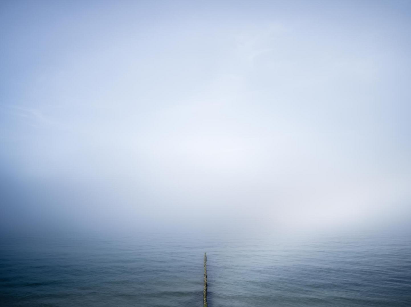 Nebel in Ahrenshoop