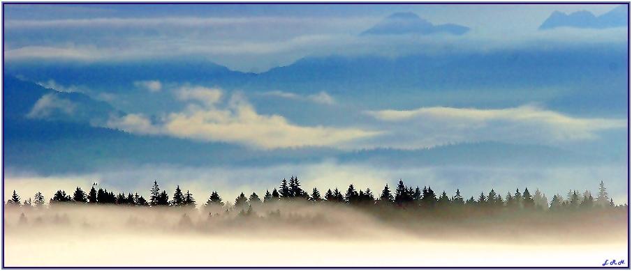 Nebel in Alaska #2