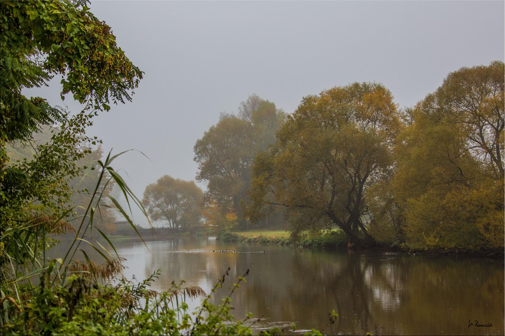Nebel in Büchenbach 1