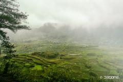 Nebel in den Bergen bei Sagada