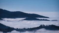 Nebel in den Tälern II
